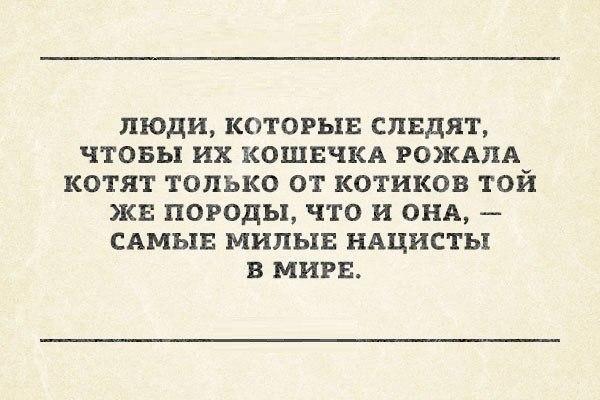 https://pp.vk.me/c620921/v620921940/4ca5/BIQHej5yxXc.jpg