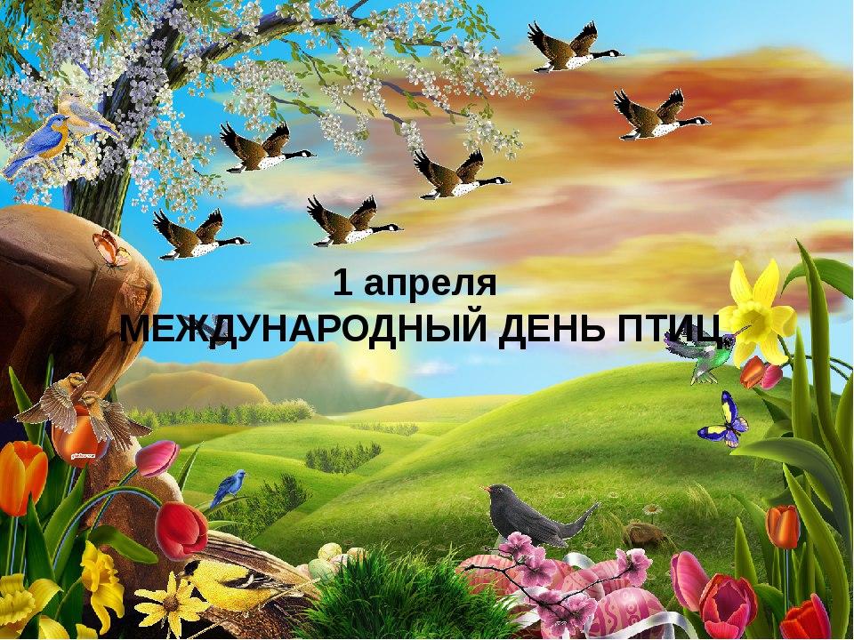 https://pp.userapi.com/c7003/v7003396/4b425/zZFg9fBGF5s.jpg