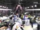 Почему не стоит покупать китайскую одежду? (Территория обмана)