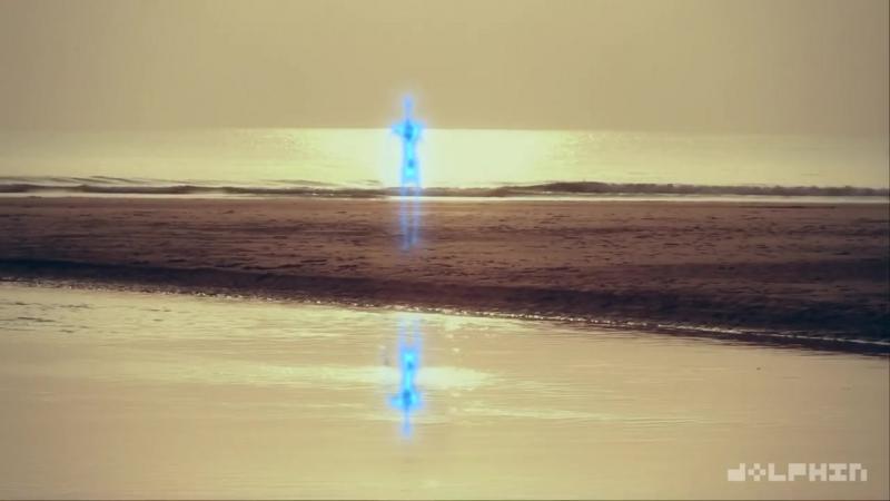 Дельфин - Sunset