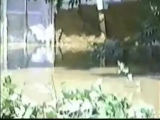 Наводнение в Армавире (2002 год) Старая Станица, Новокубанск, Красная Поляна