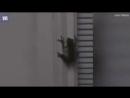 Просто лягушка проглотила светлячка