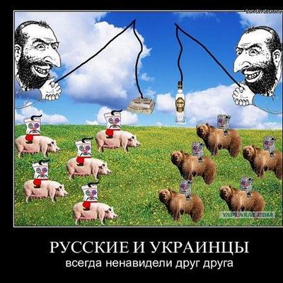 Дмитрий Дубовапосадка
