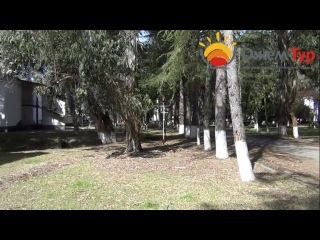 jamtour.org пансионат Эвкалиптовая  роща (Сухум, Абхазия) территория