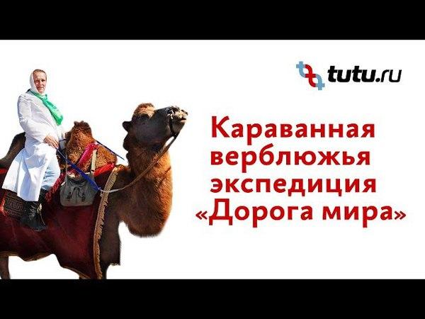 Дух путешествий || Ирина Умнова (Конюхова): караванная верблюжья экспедиция Дорога мира