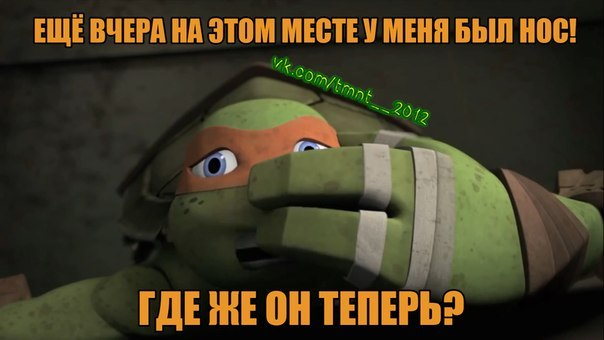 «10 Серия 5 Сезон Черепашки Ниндзя» / 2009