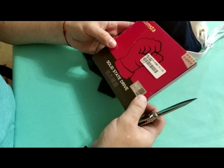 SSD Ramsta S600 на 480Gb и Плавки с gearbest с примеркой. ZTD#419