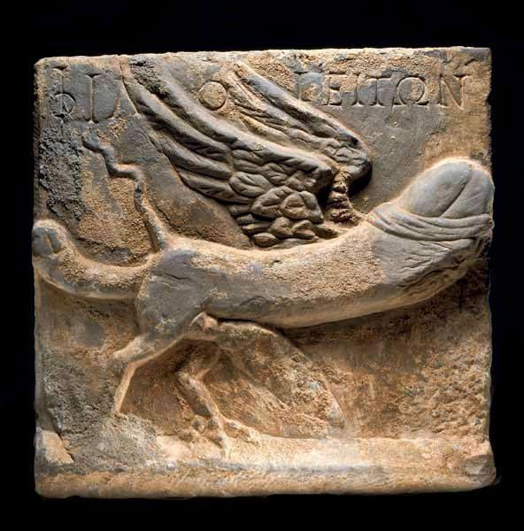 Это что еще за животное такое было в Древней Греции?)