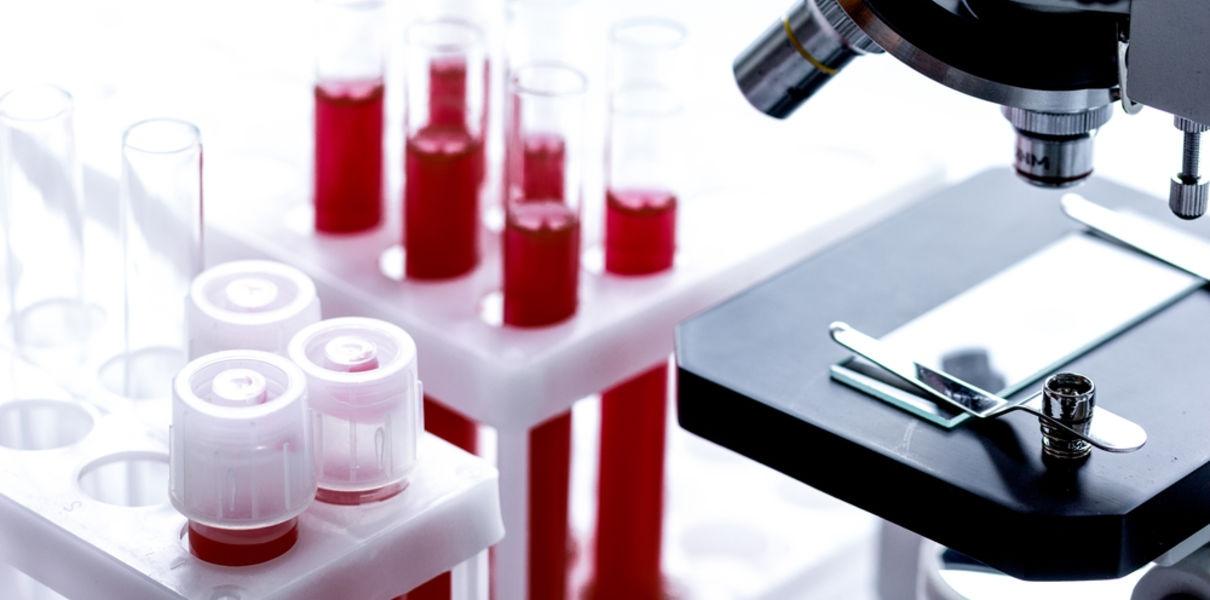 Искусственный костный мозг начнет бороться с болезнями крови в организме человека