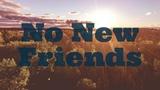 LSD - No New Friends Ft. Sia, Diplo, Labrinth (NOIXES Remix)