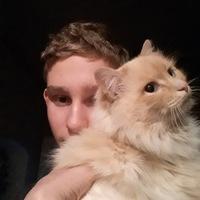 1dndn avatar