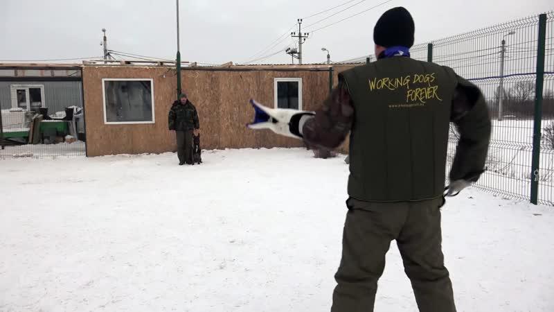 защитно-караульная служба на площадке КЦ Джульбарс