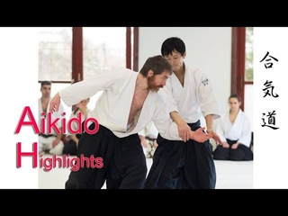 Dynamic Aikido Highlights in Hungary 合気道ハイライト
