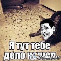 Дима Алексеев, 21 марта 1999, Омск, id196832456