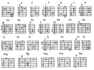 слова и аккорды песен с приколами