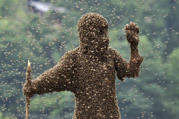 На милиционеров под киевом напали пчелы-мутанты.