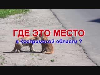 ГДЕ ЭТО МЕСТО в Костромской области