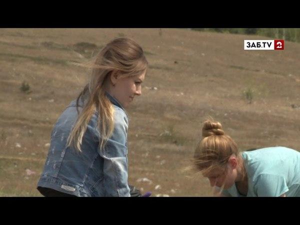 Экоакция ПЛОГГИНГ призывает людей убирать мусор во время прогулок