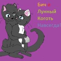 Коты воители как зовут всех котов