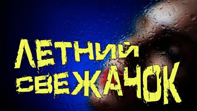 ЛЕТНИЙ СВЕЖАЧОК / ОТБОРНАЯ ДИСКОТЕКА