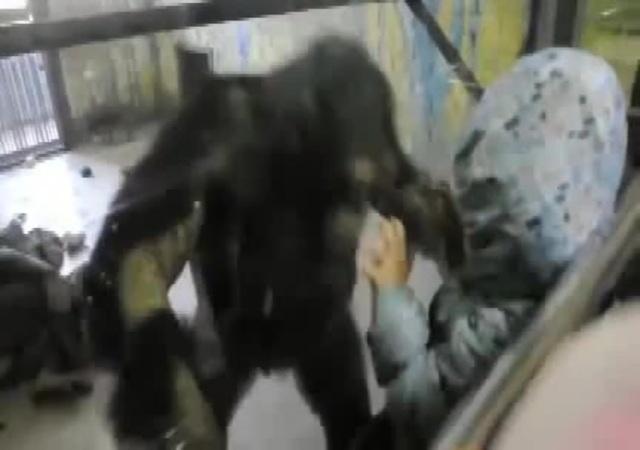 Ребенок собрался роздвигать булки обезьяне