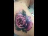цветная роза