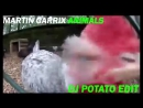 Martin Garrix - Animals (DJ Potato Edit)