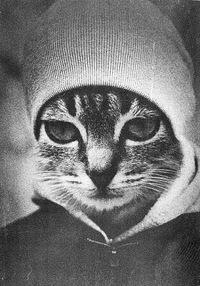 Вас Гош, 4 февраля 1988, Сургут, id186791563