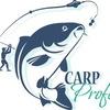 CarpProfi.com
