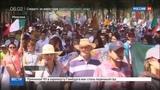 Новости на Россия 24 Мексиканцы проводят массовые антитрамповские акции
