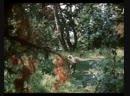 Приключения Тома Сойера и Гекльберри Финна 2 серия 1981