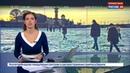 Новости на Россия 24 В Санкт Петербурге снова замерзла Нева