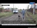 В Черемхово служебно-розыскная собака Рэм помогла раскрыть два преступления по горячим следам