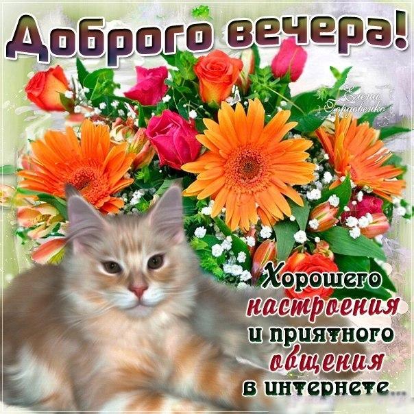 http://cs7060.vk.me/c7004/v7004969/68a7/0ajlgbKHsYs.jpg