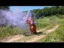 Благазавр на тропе войны. Прячьте своих птеродактилей!