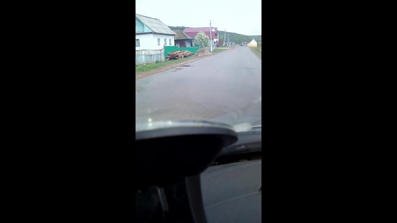 Для моей подруги , сегодня сняла на видео,на улице коммунистическая черемуха в цвету