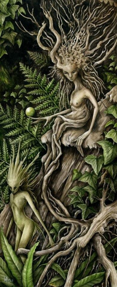 чернаямагия - Магия растений. Магические свойства растений. Обряды и ритуалы. Амулеты и талисманы из растений.  CcnojuyFinc