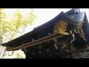 Сендай тур  ロシア語で仙台ツアー