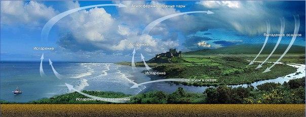 В круговороте воды не участвуют (до поры до времени) только воды, связанные в кристаллической решетке минералов и...