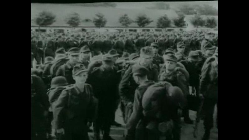 Выжженная земля. Вермахт в России. Группа армий Север (1999)