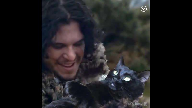 Оскар этой кошке