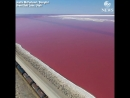 Эта дорога разделила розовое соленое озеро и океан! ? Невероятное зрелище!