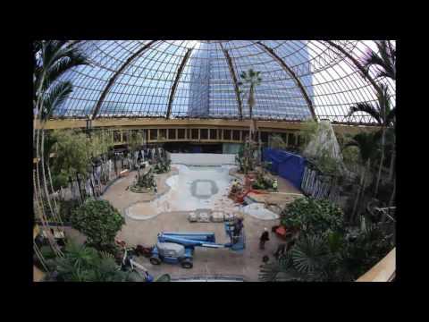 Multi Million Dollar Pool Renovation Timelapse
