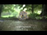 Александр Яковлев - live via Restream.io