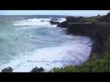 ERNESTO CORTAZAR - Dancing waves.mp4