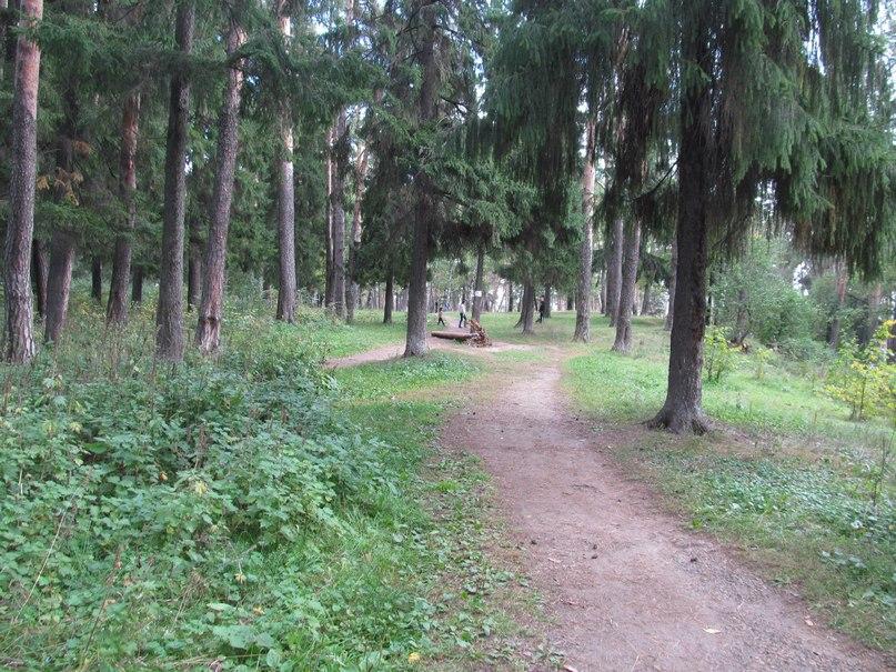 ленинский парк фото сарапул