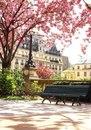 Весенний Париж, Франция