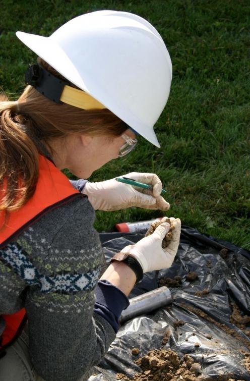 Тестирование часто проводится для определения токсичности почвы на строительных площадках.