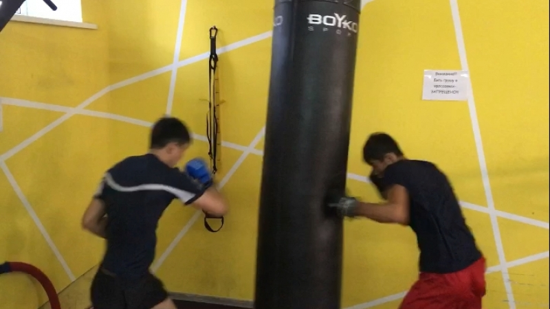 Боксерский мешок 130 кг