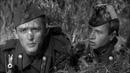 Максим Перепелица (1955) - комедия, экранизация
